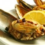 Deniz Gülü Restaurant