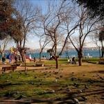 Fındıklı Parkı