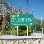 Saip Kır Kahvesi