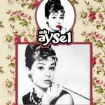 ADI AYSEL
