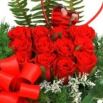 Acarkent Çiçek