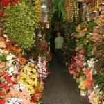 Letisya Çiçekçilik