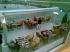 Göl Restorant